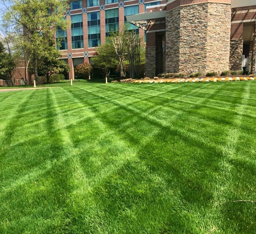 Commercial Property Landscape Design: Professional Landscape Design And Land Clearing Services